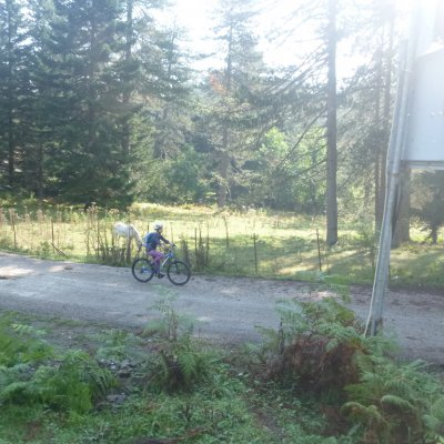 Mountain Bike Zagori